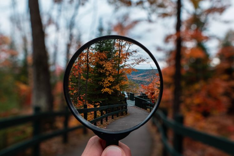 magnifying glass looking at autumn forest