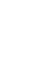 The Stevies logo